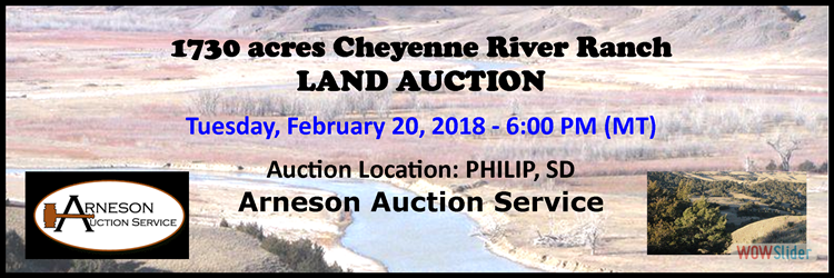 Arneson Land Auction